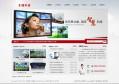 热烈祝贺六安龙腾安防科技有限公司网站正式上线