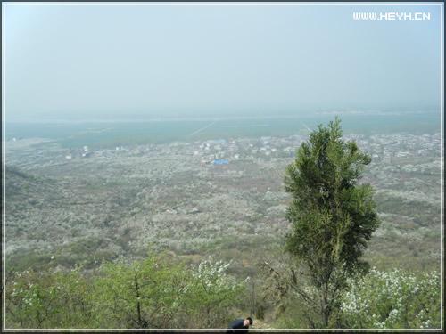 贝贝去八公山镇旅游20120407